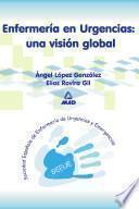Enfermeria en Urgencias: Una Vision Global. Ebook