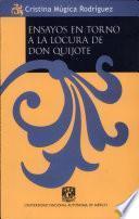 Ensayos en torno a la locura de don Quijote