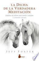 La dicha de la verdadera meditación