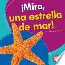 ¡Mira, una estrella de mar! (Look, a Starfish!)