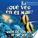¿Qué veo en el mar? (What Do You See, in the Sea?)